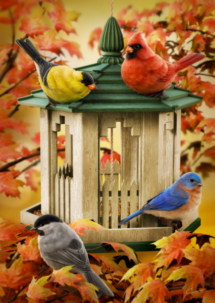 Community Bird Feeder
